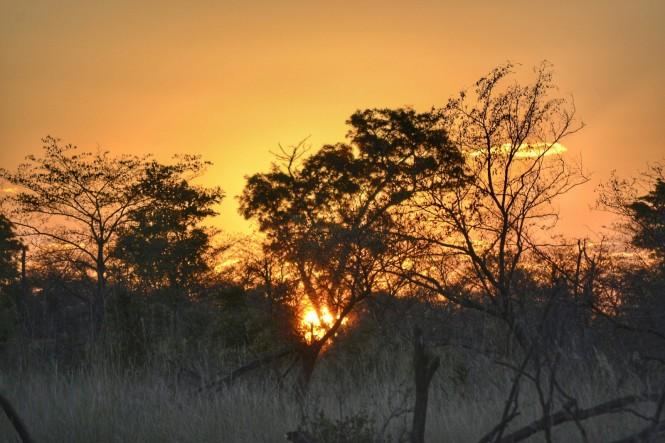 2017-06-namibia-safari-mahango-29-puesta-sol.jpeg