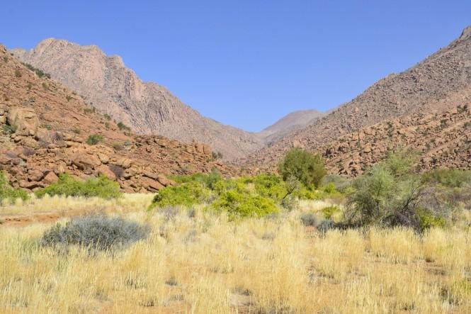 2017-06-namibia-brandberg-white-lady-06-ruta.jpeg