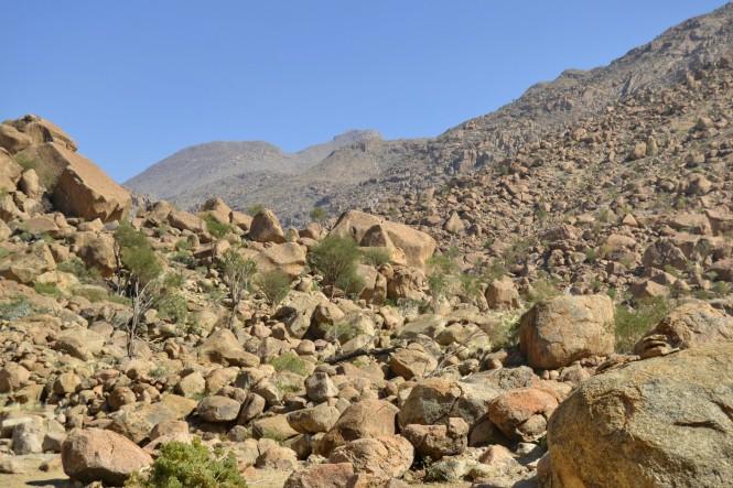 2017-06-namibia-brandberg-white-lady-13-ruta.jpeg