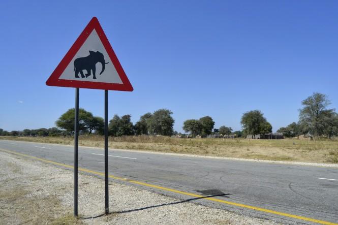 2017-06-namibia-caprivi-b8-senal-1.jpeg