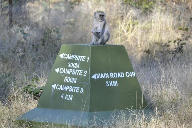 2017-06-namibia-caprivi-mudumu-mono-en-senal