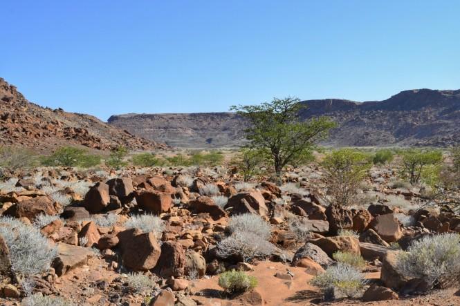 2017-06-namibia-damaraland-twyfelfontein-01.jpeg