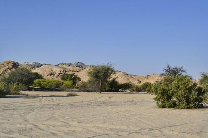 2017-06-namibia-swakopmund-welwitschia-plains-beacon-11-paisaje