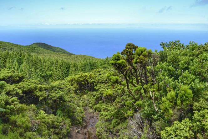 2017-07-azores-terceira-serreta-ruta-lagoinha-07.jpeg