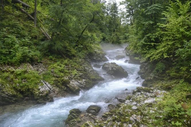2018-07-eslovenia-bled-soteska-vintgar-02.jpeg