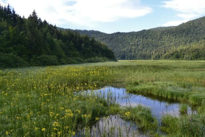 2018-07-eslovenia-cerknisko-Jezero-2
