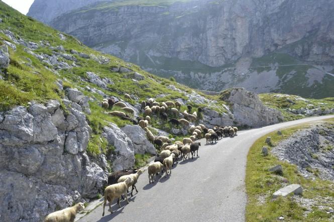 2018-07-eslovenia-dolina-soce-valle-soca-mount-mangart-02
