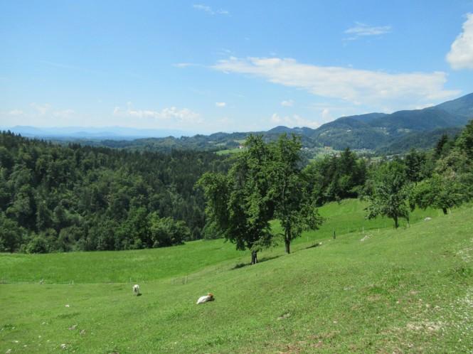 2018-07-eslovenia-velika-planina-03-subida