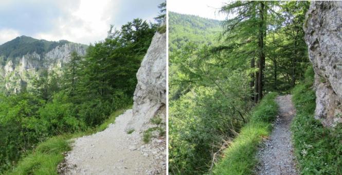 2018-07-eslovenia-velika-planina-06-subida