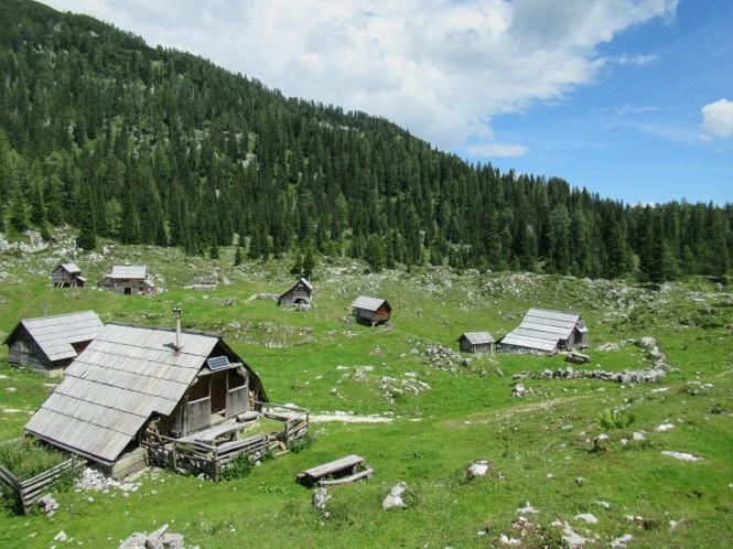 2018-07-eslovenia-alpes-julianos-triglav-etapa-1-13-planina-Dedno-Polje