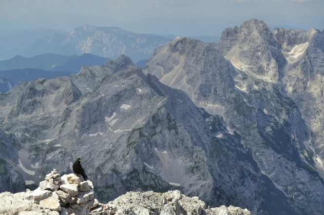 2018-07-eslovenia-alpes-julianos-triglav-etapa-2-38-cima-triglav.jpeg