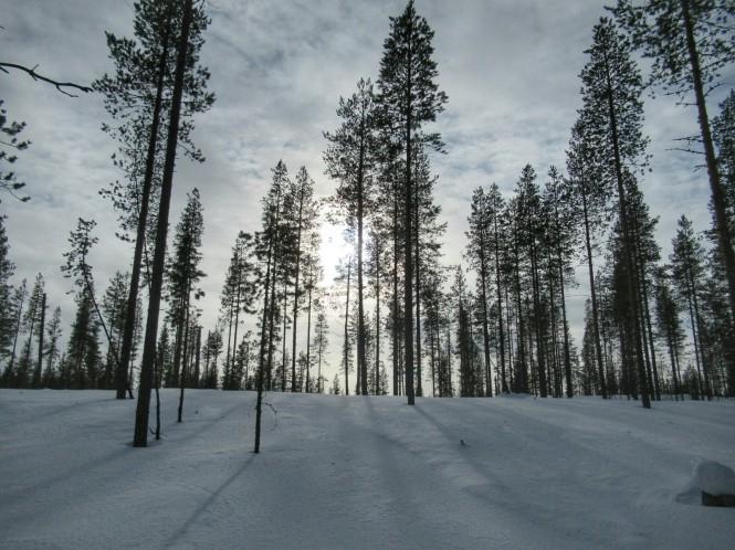 2019-03-finlandia-dia-1-14-vuelta-a-rajakartano-por-encima-lago-ollori