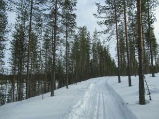 Esquí en Hossa - Día 1 - Lago Öllöri