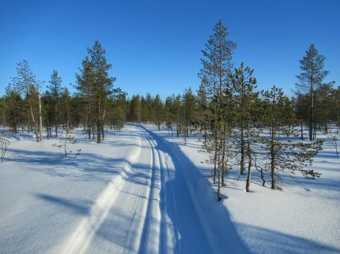 2019-03-finlandia-dia-1-26-hacia-kukkarolampi.jpeg