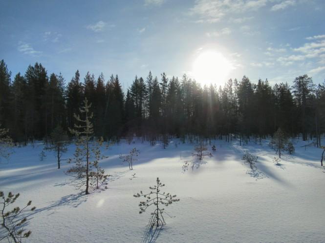 2019-03-finlandia-dia-2-05-hacia-hossanlahti.jpeg