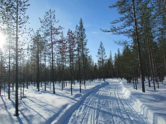 2019-03-finlandia-dia-2-10-hacia-vieremanjarvi
