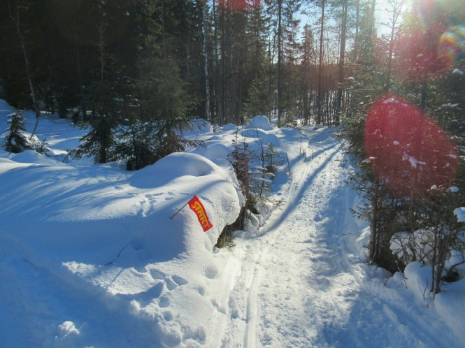2019-03-finlandia-dia-2-23-hacia-kovavaara.jpeg