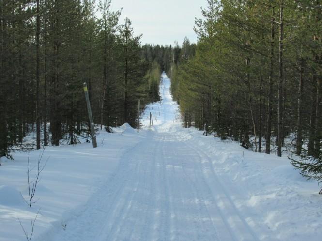 2019-03-finlandia-dia-3-12-hacia-hameahon-autiotupa.jpeg