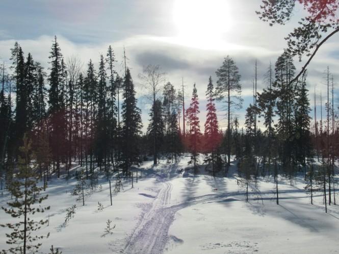 2019-03-finlandia-dia-3-26-hacia-arola.jpeg