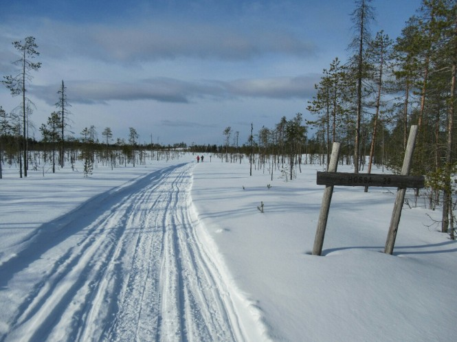 2019-03-finlandia-dia-3-27-hacia-arola.jpeg