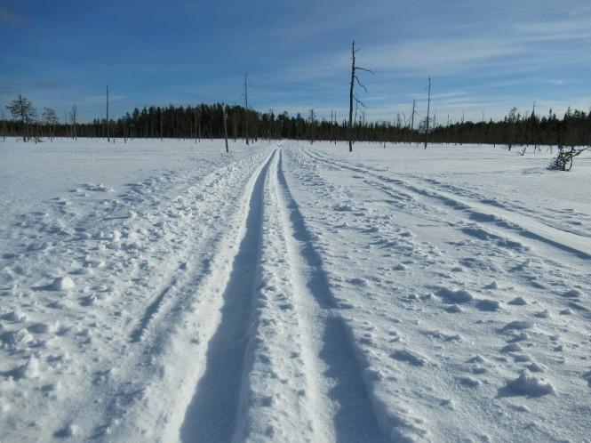2019-03-finlandia-dia-3-28-hacia-arola.jpeg
