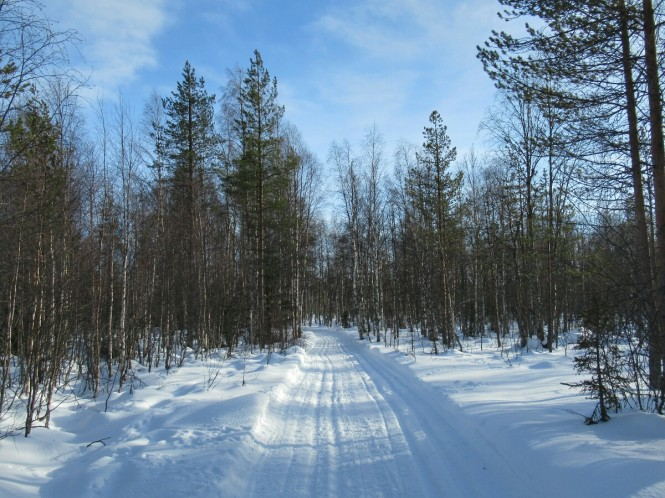 2019-03-finlandia-dia-3-29-hacia-arola.jpeg