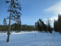 Esquí en Martinselkonen - Día 3 - Arola