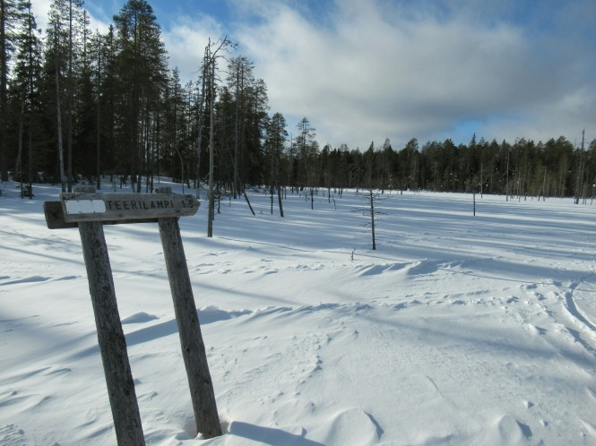 2019-03-finlandia-dia-4-11-hacia-teerilampi.jpeg