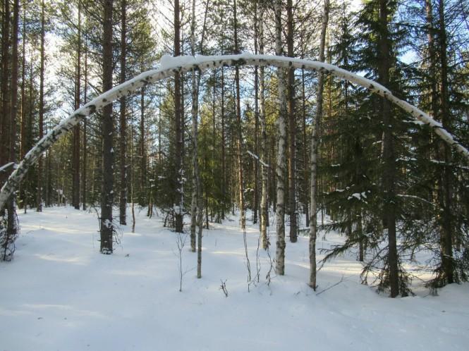 2019-03-finlandia-dia-4-27-hacia-martinselkonen.jpeg