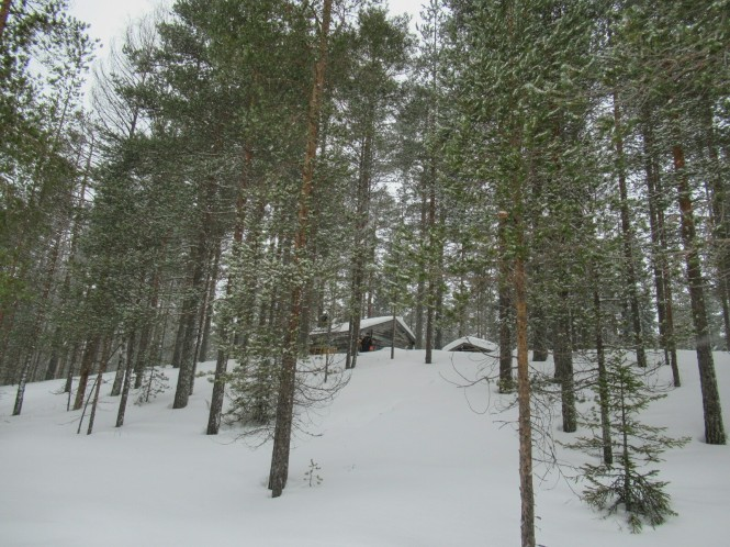 2019-03-finlandia-dia-5-09-hacia-teerilampi.jpeg