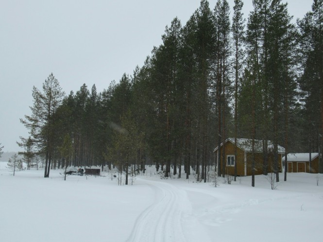 2019-03-finlandia-dia-5-17-lintulampi-autiotupa.jpeg