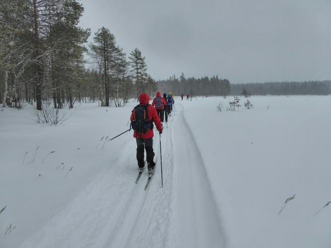 2019-03-finlandia-dia-5-24-hacia-martinselkonen.jpeg