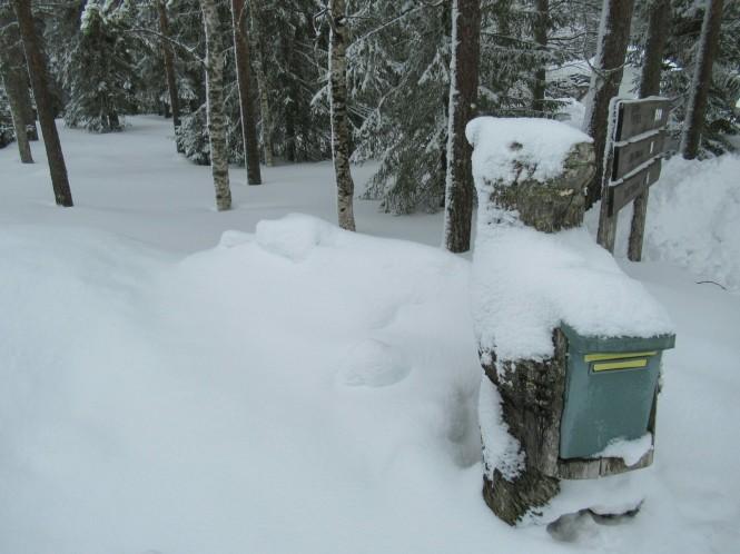 2019-03-finlandia-dia-6-07-martinselkonen.jpeg