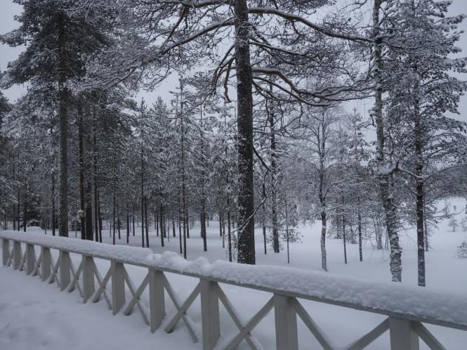 2019-03-finlandia-dia-6-10-martinselkonen.jpeg