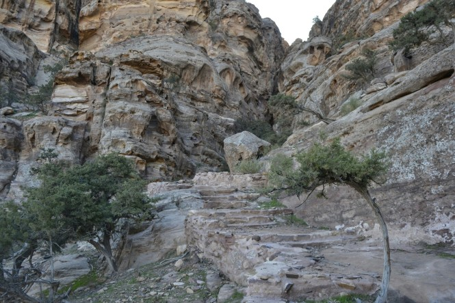 2018-12-jordania-petra-entrada-trasera-06.jpeg