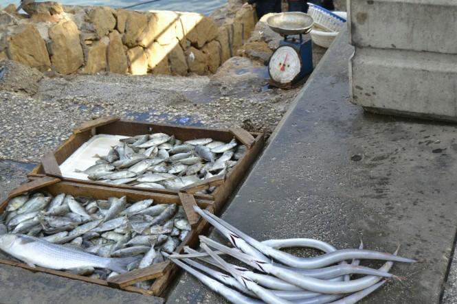 2018-12-libano-beirut-corniche-08-pescado