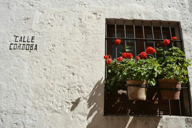 2019-08-peru-arequipa-convento-santa-catalina-09-calle-cordoba.jpeg