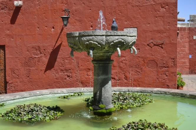 2019-08-peru-arequipa-convento-santa-catalina-15-plaza-zocodober.jpeg