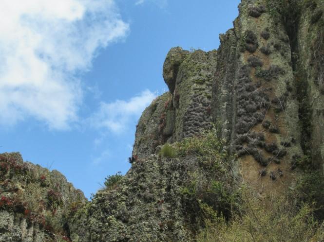 2019-08-peru-cajamarca-cumbe-mayo-19-bosque-piedra-elefante
