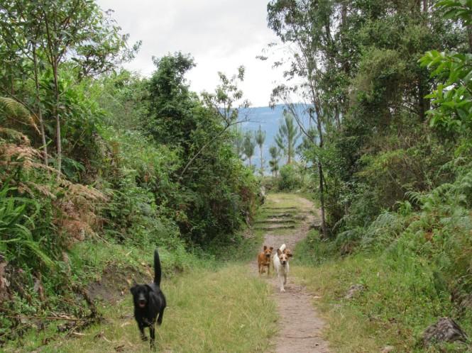2019-08-peru-chachapoyas-gocta-02-camino