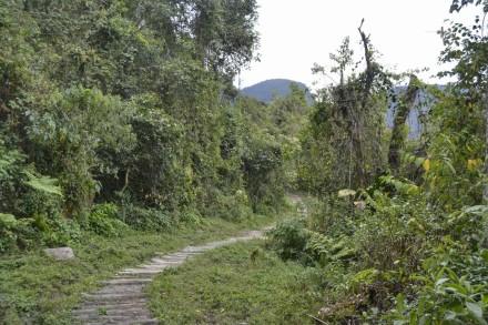 Ruta Catarata de Gocta