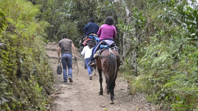 2019-08-peru-chachapoyas-gocta-24-ruta-cocachimba.jpeg