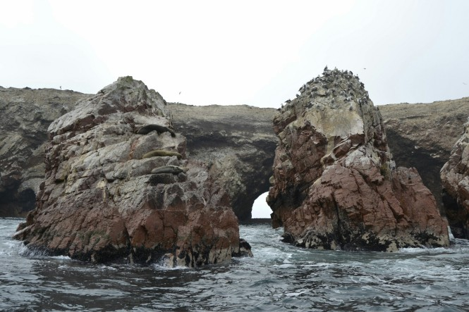 2019-08-peru-tour-islas-ballestas-16-las-islas