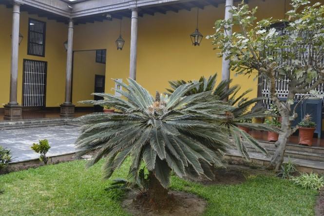 2019-08-peru-trujillo-plaza-de-armas-25-casa-urquiaga