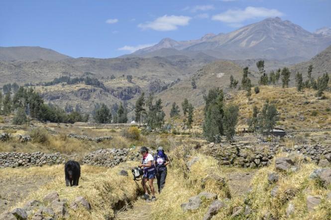 2019-09-colca-cabanaconde-10-mirador-achachihua-camino.jpeg
