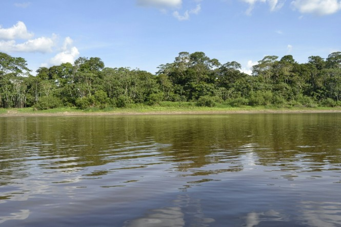 2019-09-iquitos-pacaya-samiria-07-rio-maranon.jpeg