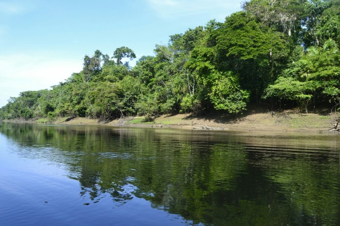 2019-09-iquitos-pacaya-samiria-45-pesca-piranas.jpeg