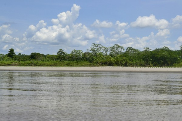 2019-09-iquitos-pacaya-samiria-04-rio-maranon