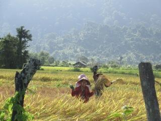 Lago IndIndawgyi - Haciendo Amigosawgyi
