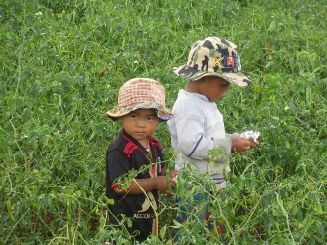 2019-10-myanmar-trekking-kalaw-inle-46